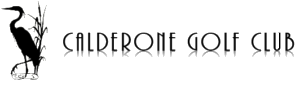 Calderone Transparent Logo